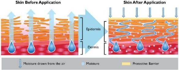 Cholesterol and ceramides to improve skin